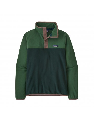 Patagonia Womens Micro D Snap-T Fleece Pullover Northern Green Offbody Front